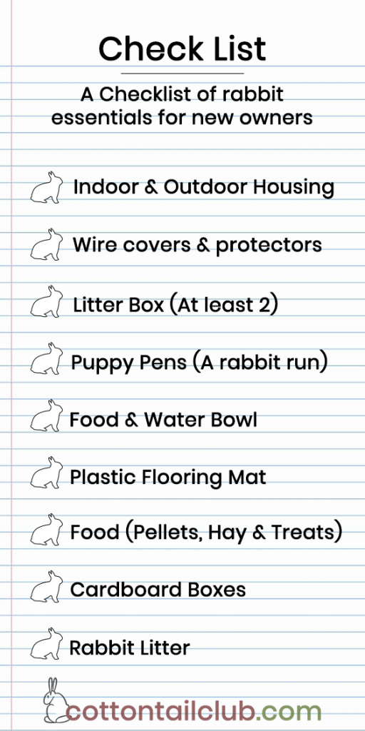 Essential checklist for beginner Rabbit Owners
